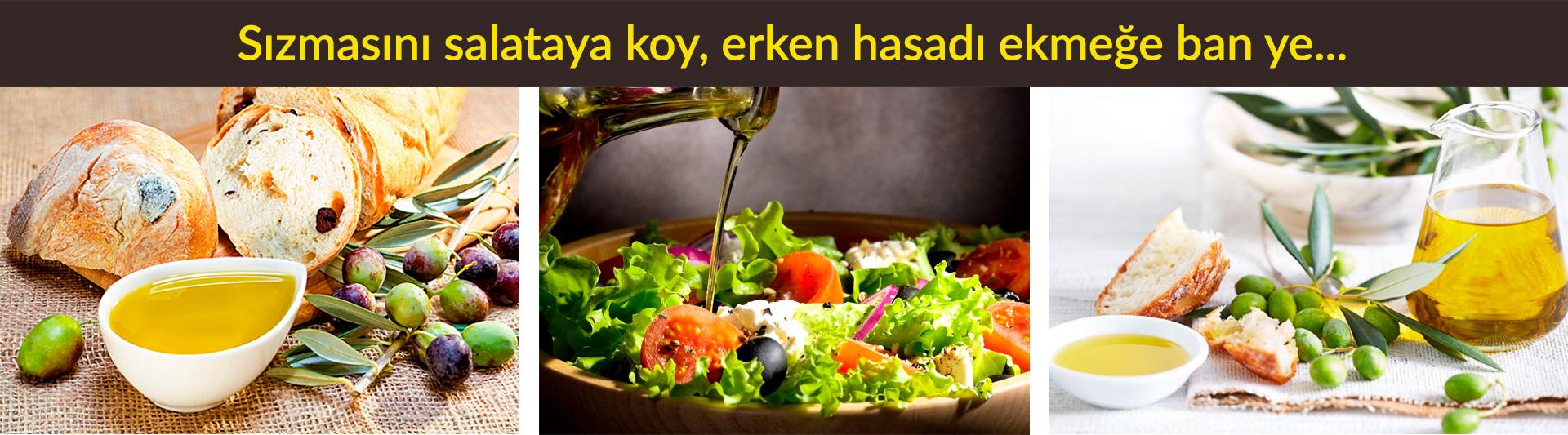Zeytinyağının Faydaları Kalorisi Yapılışı